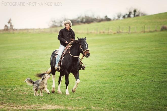 at work with animals. fotografie kristina koehler