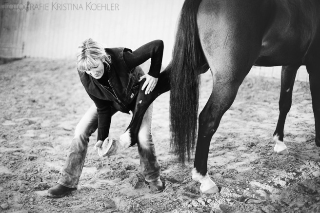 at work with animals. fotografie kristina koehler