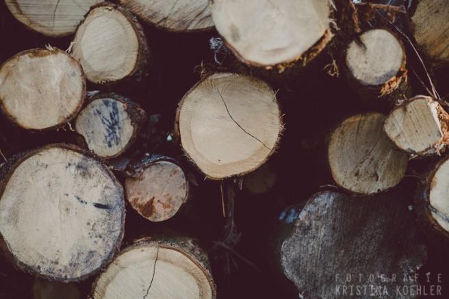 Logs. Fotografie Kristina Koehler